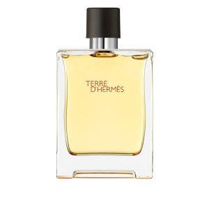 ادکلن مردانه هرمس تق هرمس Hermes Terre d'Hermes 100ml EDT